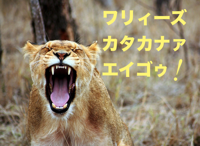 ライオンが吠えるw700