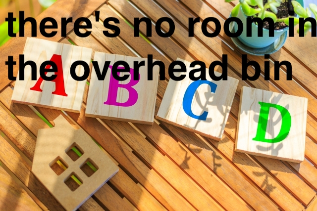 overhead_bin